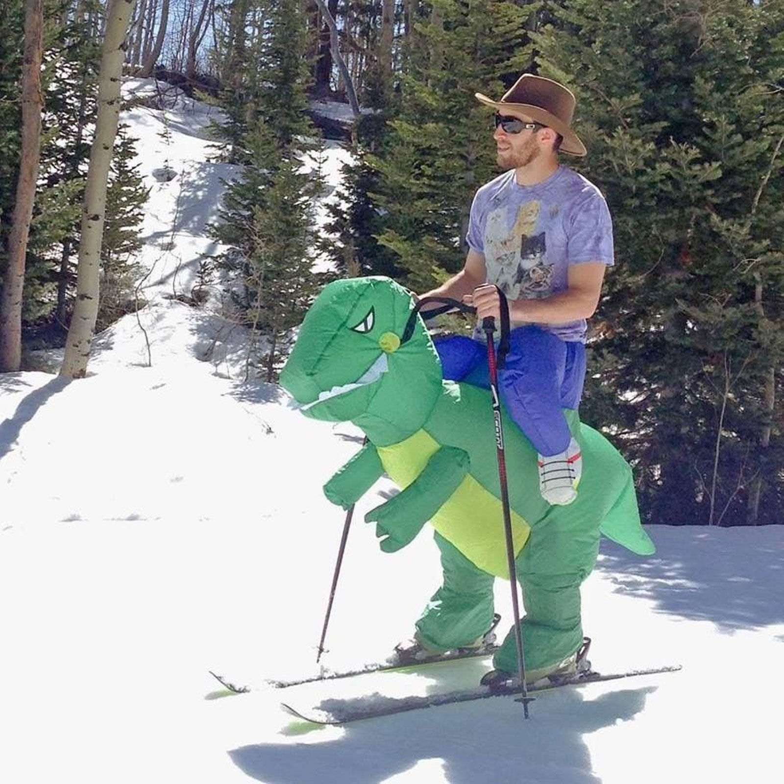 Image result for skiing dinosaur costume