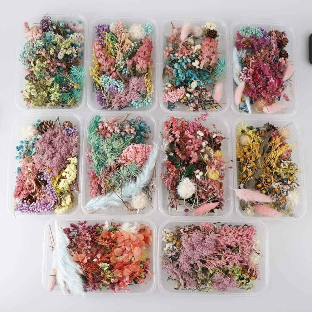 Assroetd Real Dried Flowers Pressed Leaves for Epoxy Resin Jewelry Making DIY CA