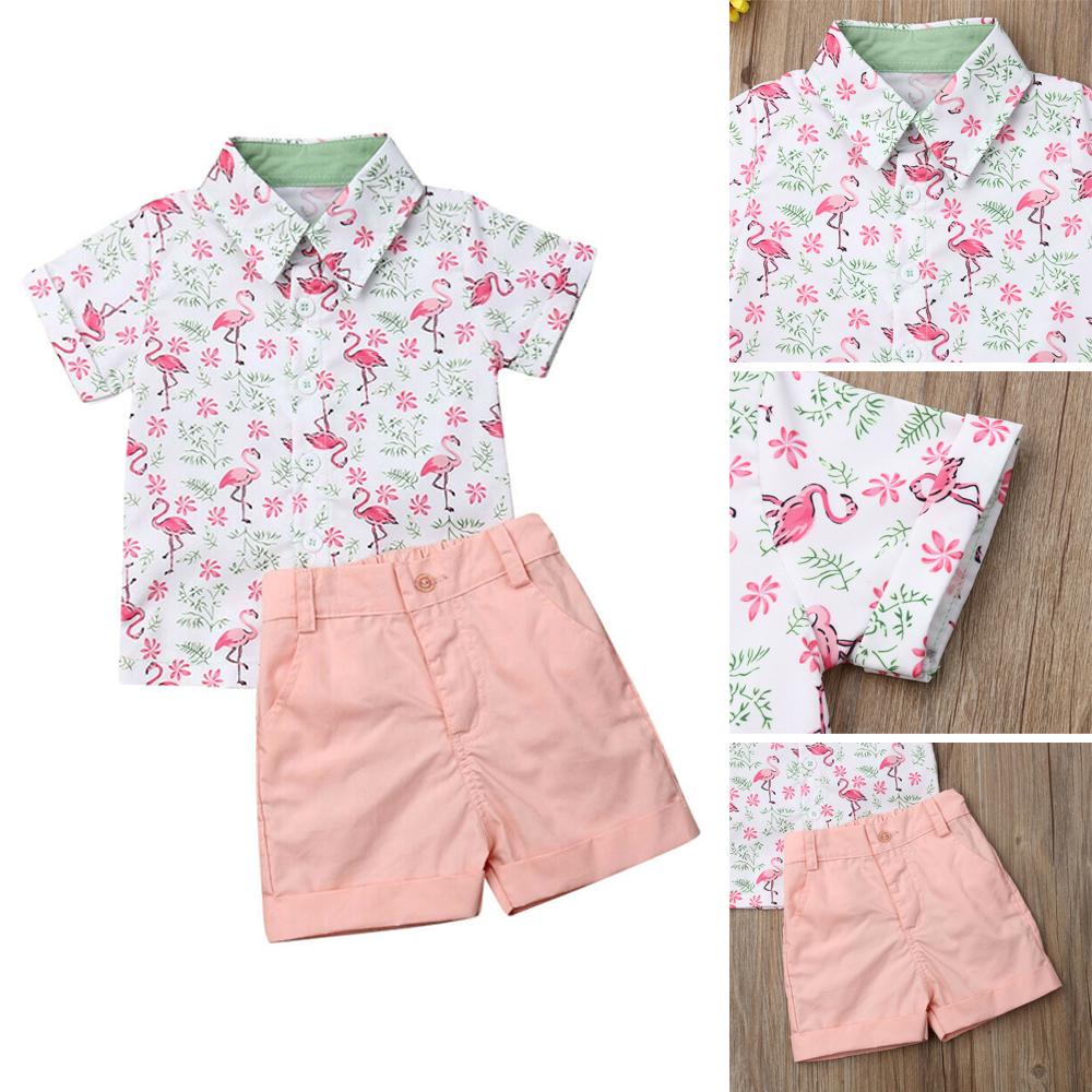 US 2pcs Kids Baby Girls Clothes Summer Tee+Short Pants Casual Outfits Flamingo