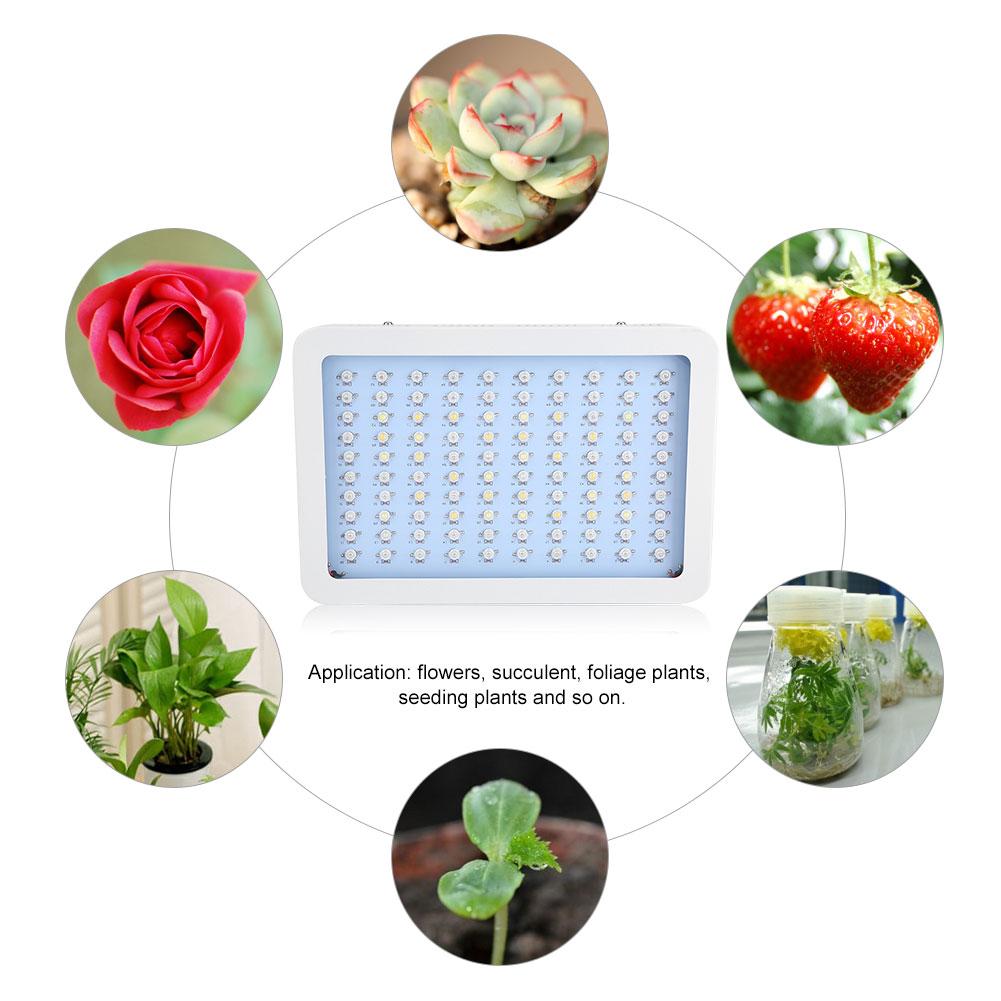 1000w Led Grow Light Kits Full Spectrum Uv For Veg Flower