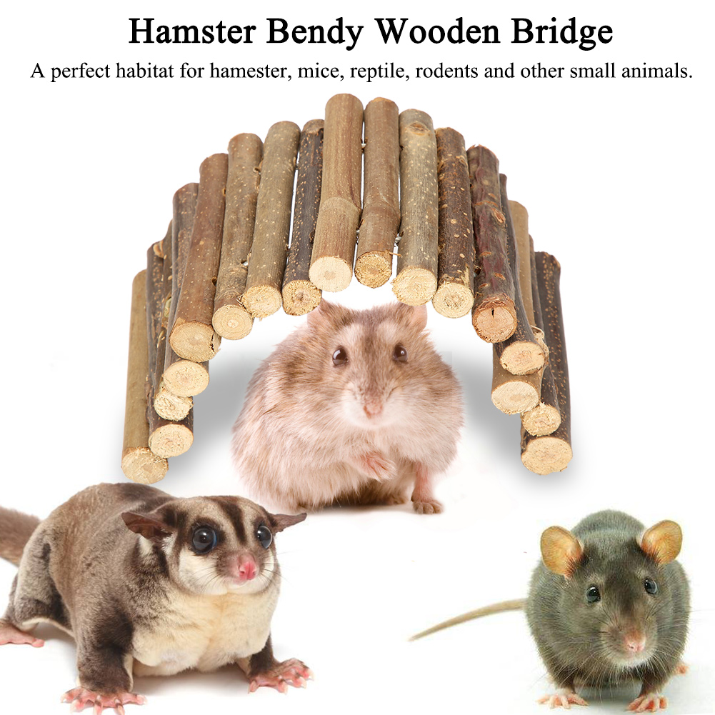 Reptile Mice Rodents Hamster Wooden Bridge Ladder House Small Animal Chew  Toy | eBay