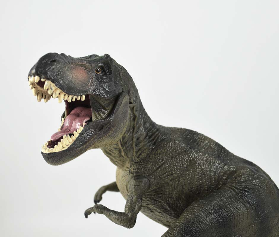 T-rex Tyrannosaurus squatting dinosaurs Figure model real type FloZ Collectible